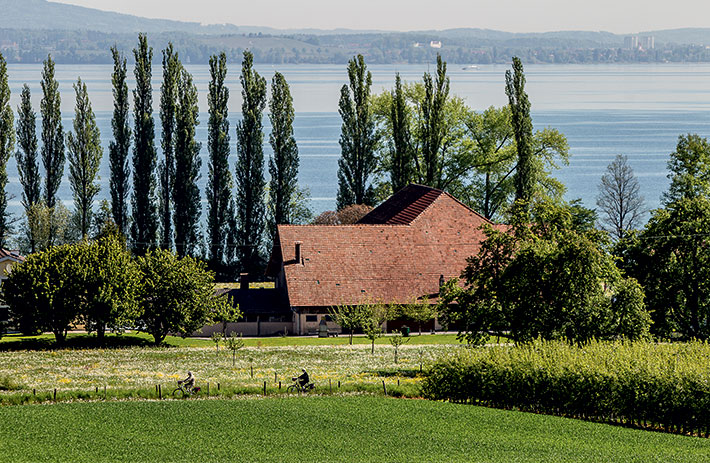 On the Lake Constance bike path